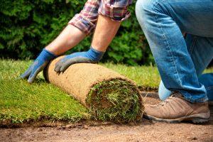 Martin Čurda radí: Na čo si dať pozor pri pokladaní trávneho koberca