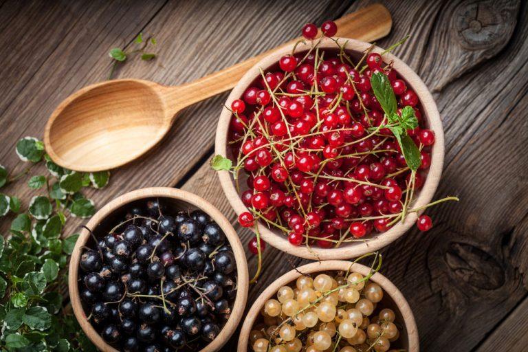 Čierne, červené a biele ríbezle v miskách na drevenom stole