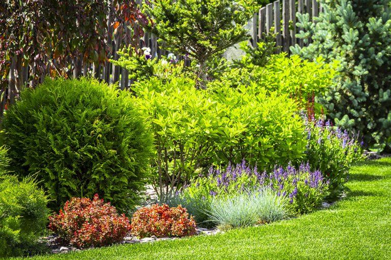 Ako vytvoriť klasickú, modernú alebo rodinnú záhradu? Poradíme vám!