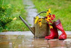 Dážď v záhrade, gumáky, krhla