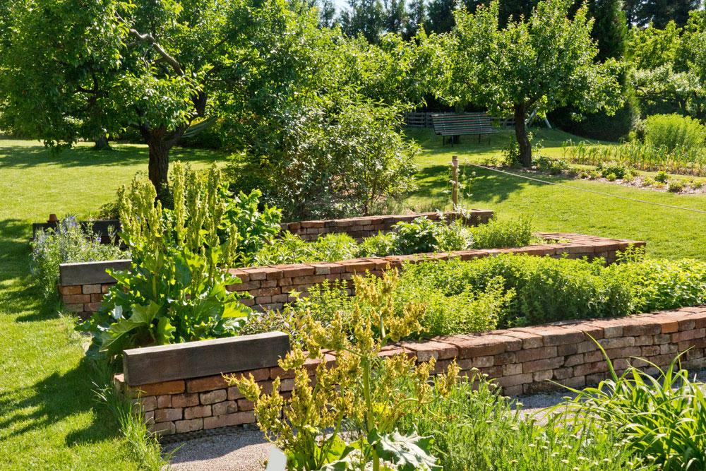 Prehľad najčastejších letných chorôb a škodcov v úžitkovej záhrade