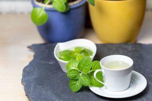 Čaj z nádchovníka