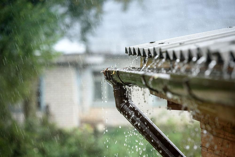 Efektívne proti suchu: Zadržte vodu na pozemku a mulčujte
