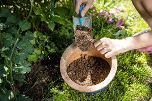 Substrát na rozmnožovanie rastlín