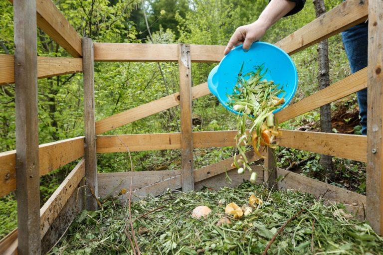 Správne kompostovanie je takmer alchýmia. Prečítajte si, ako to robiť správne