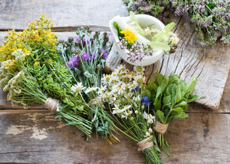 Tieto 3 bylinky zlepšia spánok a pomôžu pri stavoch úzkosti