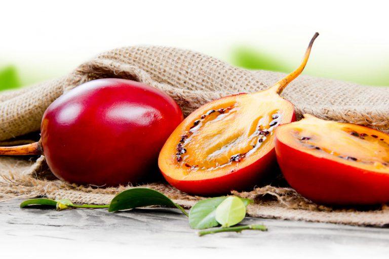 Ako pestovať rajčiakovec? Takto sa dočkáte plodov