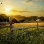 Príroda, zapadajúce slnko