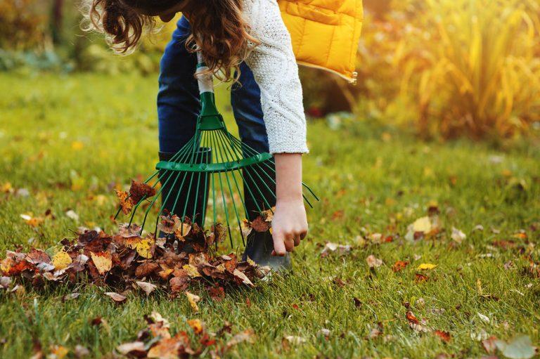 Najdôležitejšie posledné práce v úžitkovej záhrade, ktoré sa oplatí vykonať