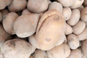 Praskliny na zemiakoch