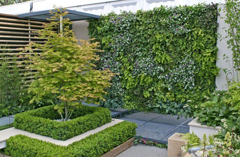 Zakryte škaredý plot zelenou stenou. Takto jednoducho si ju vyrobíte