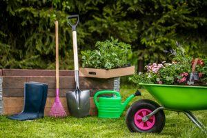 Zelený fúrik, krhla, záhradné náradie, vyvýšený záhon, kvety
