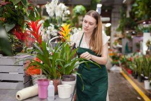 Žena pri broméliách, záhradníctvo