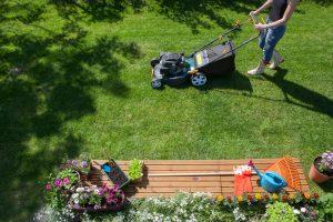 Ako sa postarať o trávnik? Pozrite si stručný prehľad starostlivosti počas celého roka