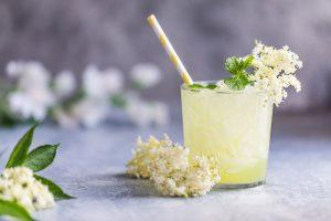 Bazový fermentovaný nápoj