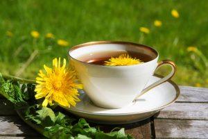 Púpavový čaj