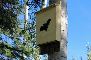 Domček pre netopiere