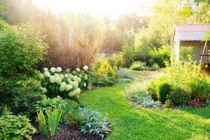 Krásna prírodná záhrada s chatkou