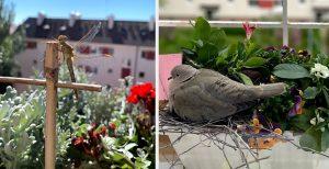 Vážka a holub na balkóne