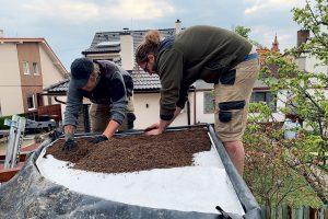 Stavba zelenej strechy - rozsypanie substrátu