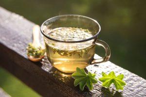 Čaj z alchemilky