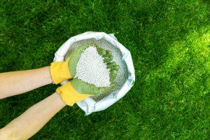 Hnojivo na trávnik