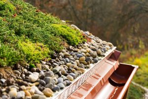 Zelená strecha