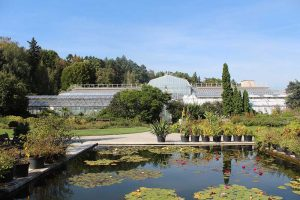 Botanická záhrada Košice