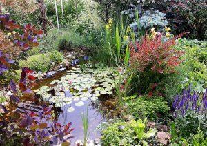 moja zahrada lucenec 2 wau