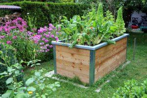 Vyvýšený záhon v záhrade