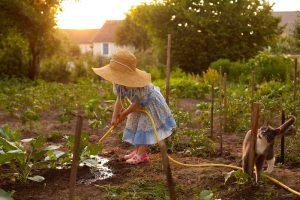 Dievčatko v šatách polieva zeleninu v záhrade