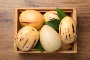 Pepino – melónový stromček s indiánskou históriou