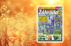 titulka Zahrada6