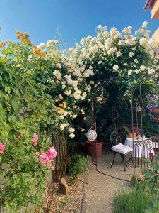 Krásna záhrada v Pezinku