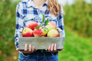 Jablká v bedničke