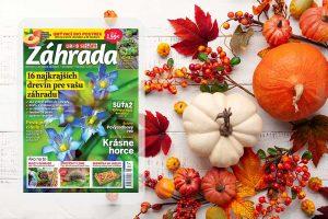 Novembrové číslo časopisu Záhrada